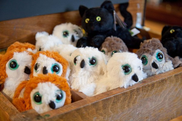 Toy Owls