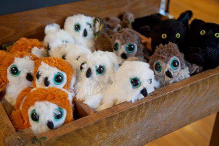 Owls, part of The Magic of Medicine toy collection.